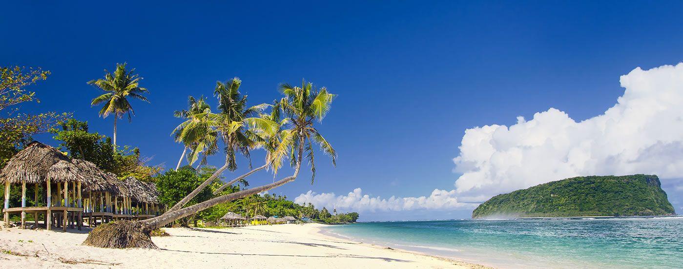 Samoa Lolamanu
